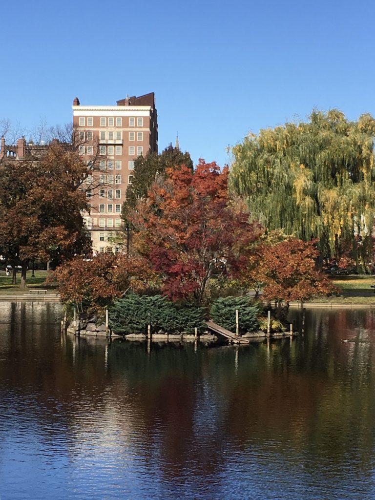Boston Commons & Public Gardens