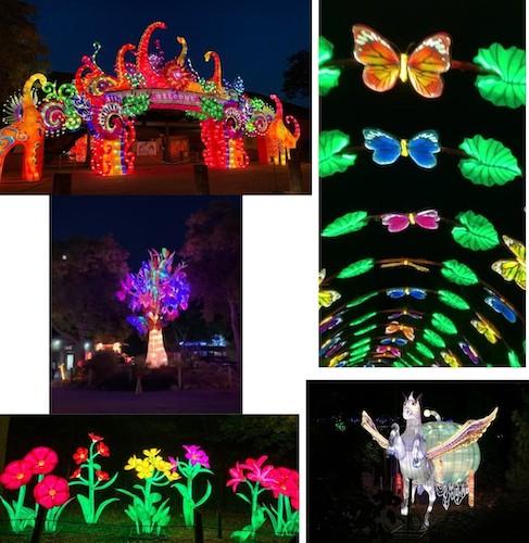 Asian-Lantern-Festival