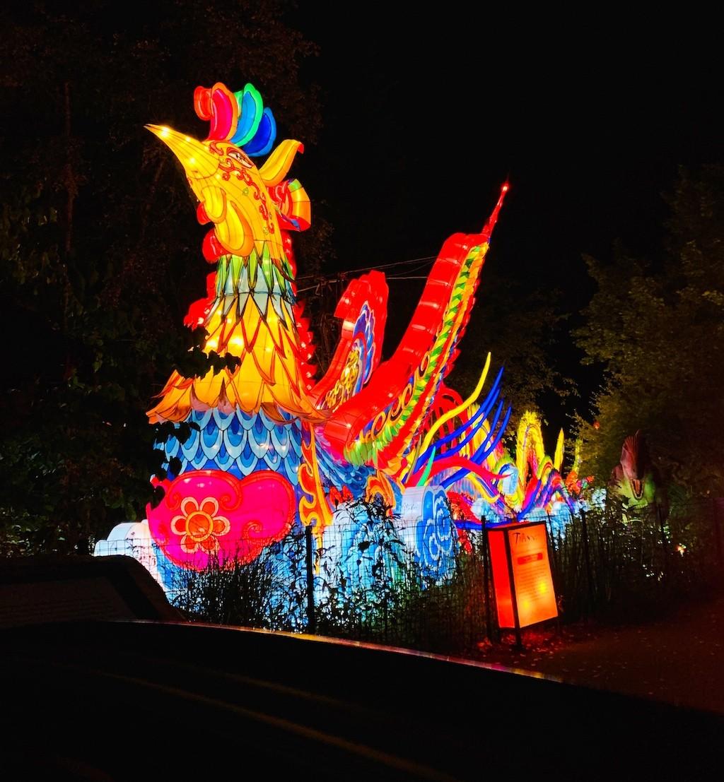 asian-lantern-festival-cleveland-metroparks-zoo